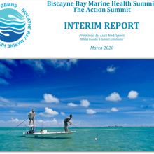 Biscayne Bay Marine Health Summit – The Action Summit Interim Report