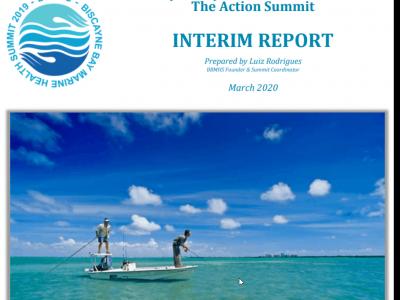 Biscayne Bay Marine Health Summit – The Action Summit Interim Report