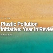 Surfrider Foundation – Plastic Pollution Initiative: Year in Review