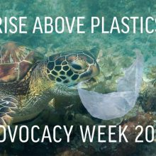 "PFI announces co-sponsorship of ""Rise above Plastics Advocacy Week"""